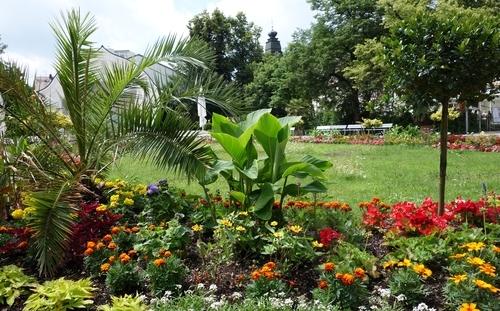 Gepflegte Blumenrabatte