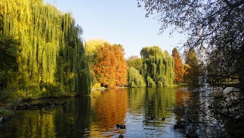 Herbststimmung im Herzogenriedpark Mannheim