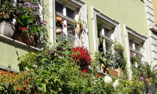 Fenster in der Heidelberger Hauptstrasse