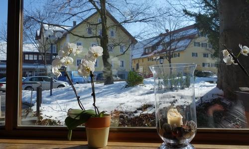 Fenster im Café