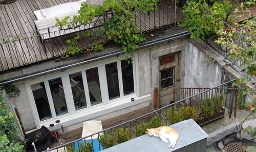 Blick auf einen Dachgarten