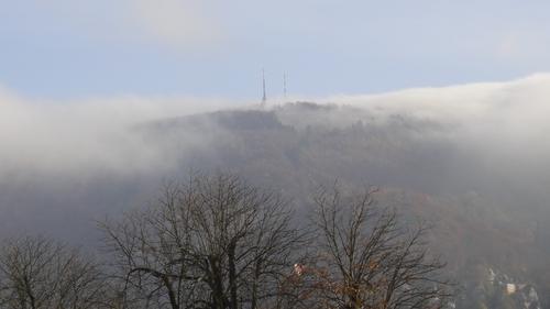 Königsstuhl im Nebel...