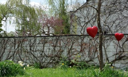 Zwei Herzen im Garten