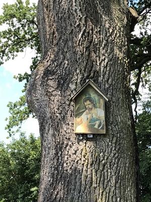 Baum mit Marterl