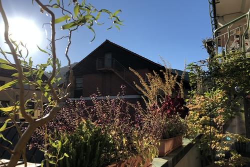 Herbstlicher Balkon