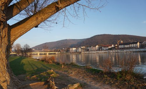 Neckarblick