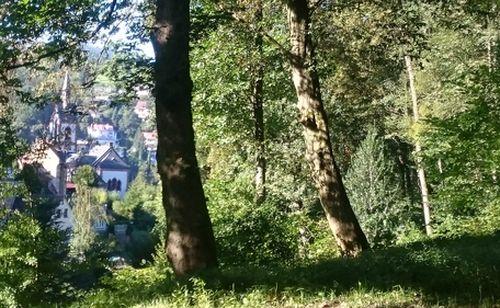 Blick vom Wolfsbrunnen auf Schlierbach