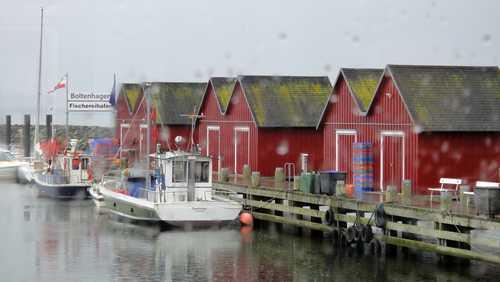 Fischereihafen an der Weissen Wiek