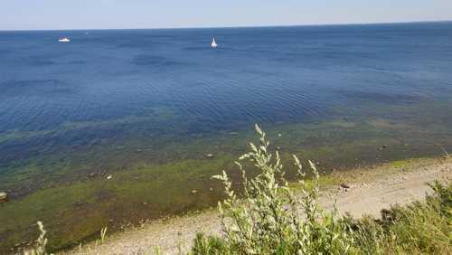 Blick auf das Meer von der Steilküste