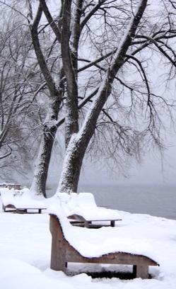 Liegeplätze am See