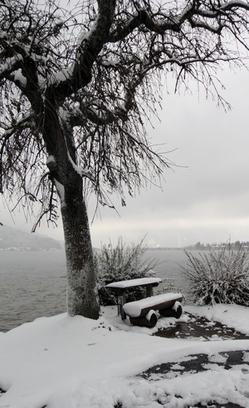 Sitzplätze am See