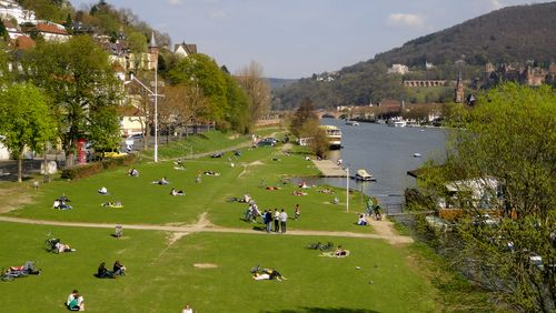 Neckarwiese