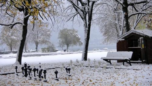 Gartenschach im Schnee