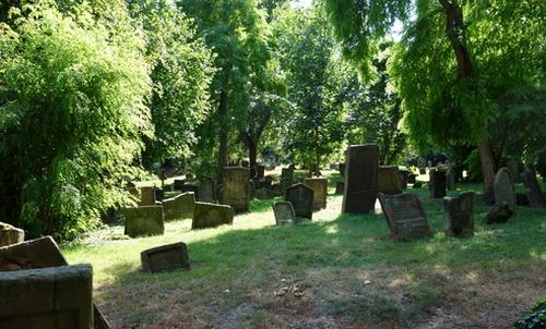 Blick über den jüdischen Friedhof
