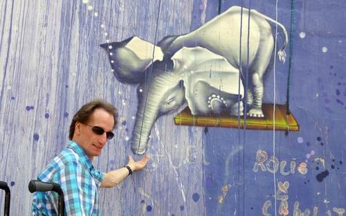 Meinereiner füttert einen Elefanten